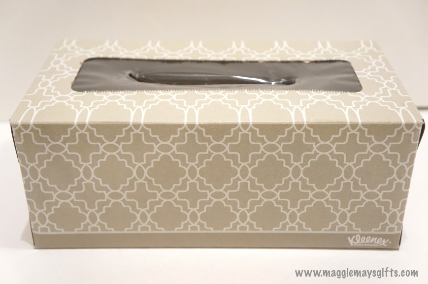 Maggie May's Kleenex decoration- box